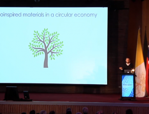 Biobased materials in Chile
